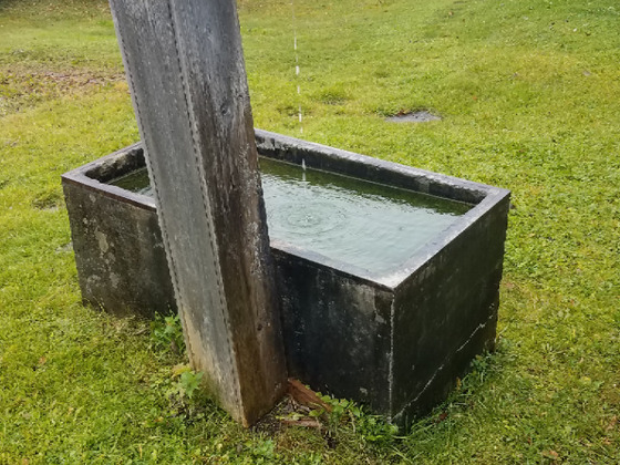 Wassertränke oder Wasserspeier mit Betonwanne