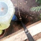 Blick ins Bohrloch - zum freibohren des Brunnenrohres