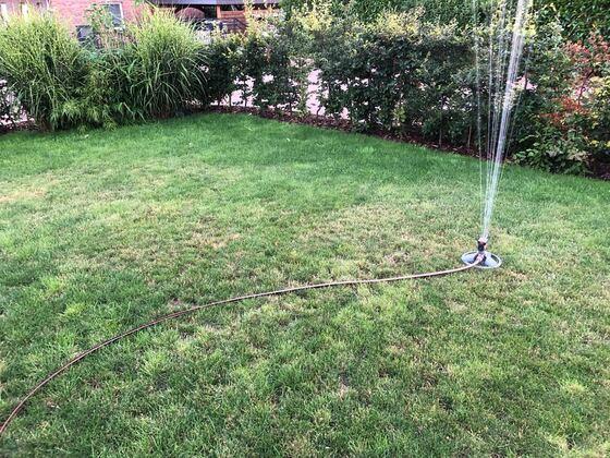 Bewässerung des Rasens